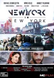 New York in New York Full İzle