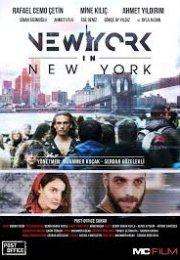 New York in New York Full İzle